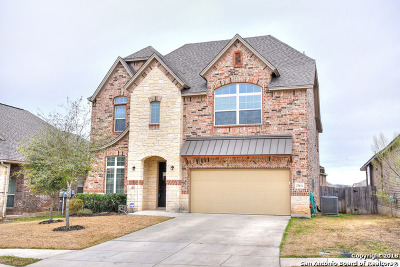 Boerne Single Family Home For Sale: 27131 Smokey Chase