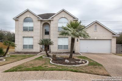 San Antonio Single Family Home For Sale: 514 Zeta Circle