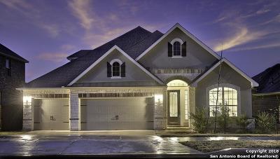 New Braunfels Single Family Home For Sale: 1062 Cedar Glen Dr