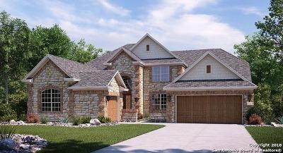 San Antonio Single Family Home For Sale: 17156 Turin Ridge