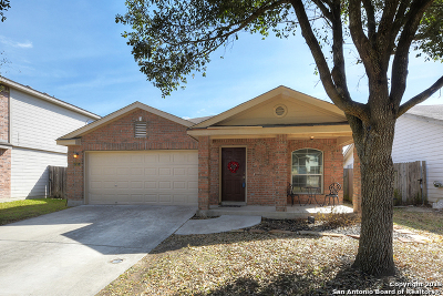 New Braunfels Single Family Home Price Change: 243 Eagle Pass Dr