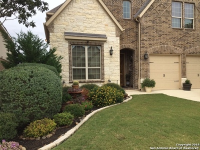Boerne Single Family Home For Sale: 8627 Dana Top Dr