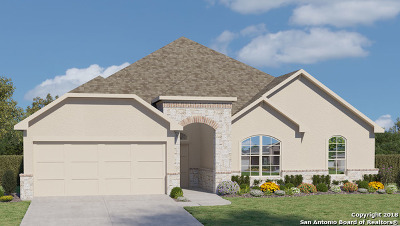 New Braunfels Single Family Home For Sale: 235 Bamberger Ave