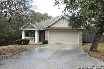 San Antonio Single Family Home For Sale: 147 Eagle Vail