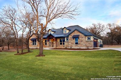 La Vernia Single Family Home For Sale: 125 Bobby Lynn Drive