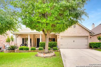 San Antonio Single Family Home For Sale: 3523 Valencia Peak