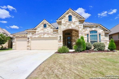 New Braunfels Single Family Home For Sale: 864 Boomerang Ct