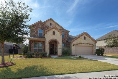 Schertz Single Family Home For Sale: 10413 Aurora Sky