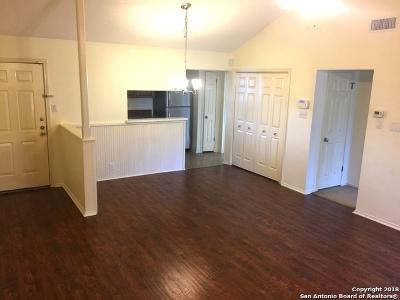 San Antonio Condo/Townhouse Back on Market: 12446 Starcrest Dr #504