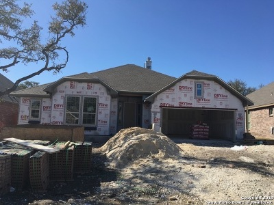Boerne Single Family Home For Sale: 240 Woods Of Boerne Blvd