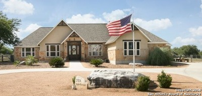 New Braunfels Single Family Home For Sale: 2324 Appellation