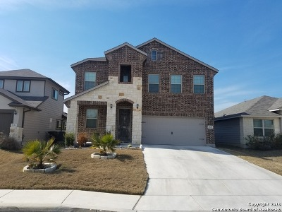 Single Family Home For Sale: 2547 Gato Del Sol