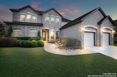 San Antonio Single Family Home For Sale: 35 Sable Cyn