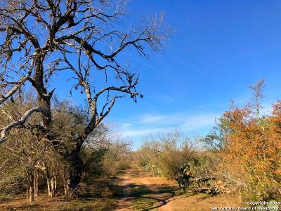 Atascosa County Farm & Ranch For Sale: Cr 340