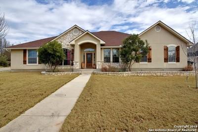 Fredericksburg Single Family Home For Sale: 2154 Hedgestone