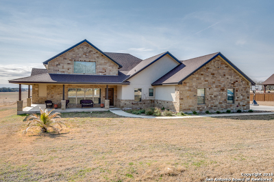 Guadalupe County Single Family Home For Sale: 1745 Sagebiel Rd