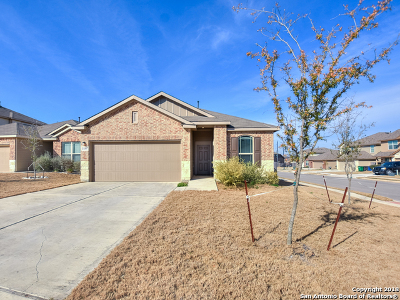 Single Family Home New: 11507 Boyd Bay