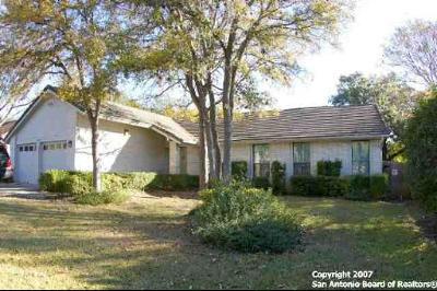 San Antonio Single Family Home For Sale: 19810 Encino Brook St