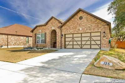 Boerne Single Family Home For Sale: 125 Rocky Path