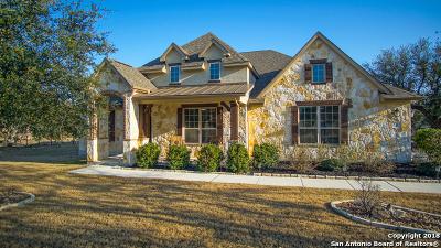 New Braunfels Single Family Home For Sale: 132 Gruene Haven