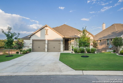 Boerne Single Family Home New: 28974 Fairs Gate
