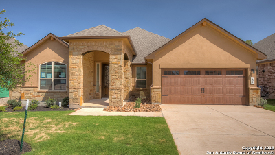 New Braunfels Single Family Home New: 231 Bamberger Ave