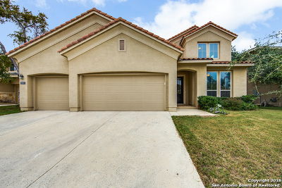 San Antonio Single Family Home For Sale: 2807 Winter Gorge