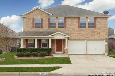 Cibolo Single Family Home New: 217 Lakota Ct
