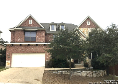 Single Family Home For Sale: 811 Artisan Way
