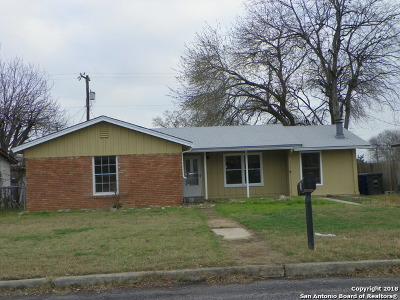 Bexar County, Comal County, Guadalupe County Single Family Home For Sale: 734 Kopplow Pl