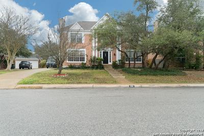 San Antonio Single Family Home For Sale: 614 Stoneway Dr