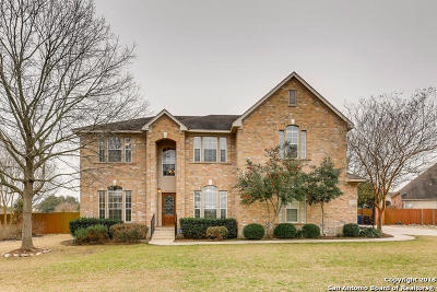 San Antonio Single Family Home For Sale: 22415 Sierra Blanca