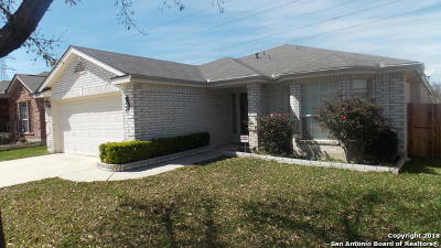 Helotes Single Family Home For Sale: 11539 Lingo
