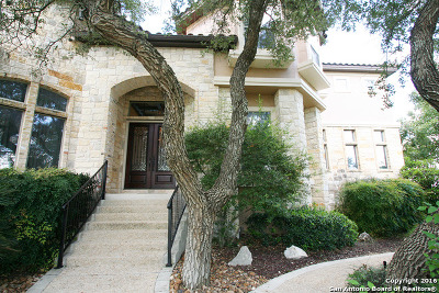 Bexar County Single Family Home For Sale: 2011 My Anns Hill