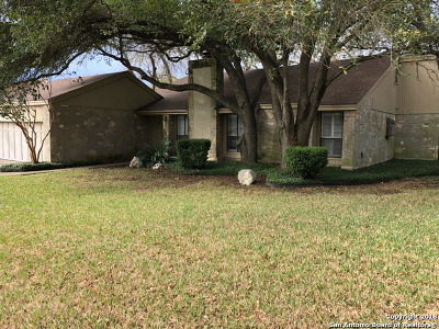 San Antonio Single Family Home For Sale: 3030 Low Oak St
