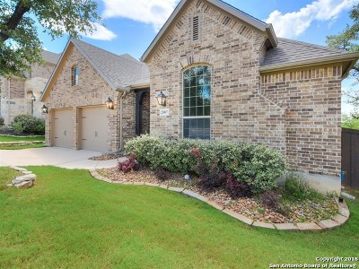 San Antonio Single Family Home New: 23007 Emerald Pass