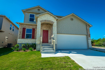 Bexar County Single Family Home New: 15163 Dione Bend