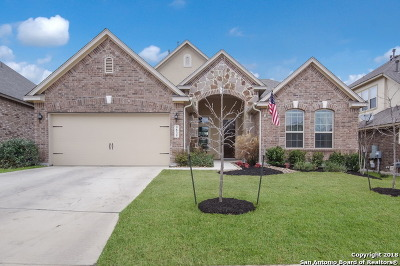 Boerne Single Family Home New: 9835 Catell