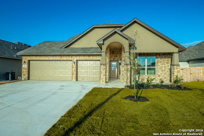 New Braunfels Single Family Home New: 844 Gray Cloud Drive