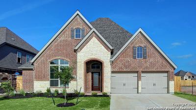 Seguin Single Family Home Price Change: 2925 Glen View