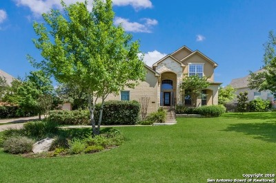 San Antonio Single Family Home New: 2015 Cactus Circle