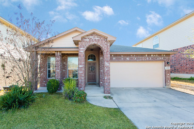 Bexar County Single Family Home New: 12510 Painted Daisy