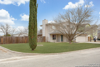 New Braunfels Single Family Home For Sale: 529 Advantage Dr