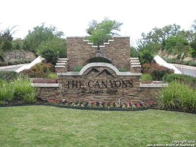 Residential Lots & Land For Sale: 10050 Ivory Canyon