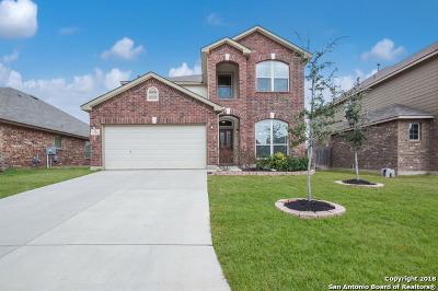 San Antonio Single Family Home New: 22826 Allegro Creek