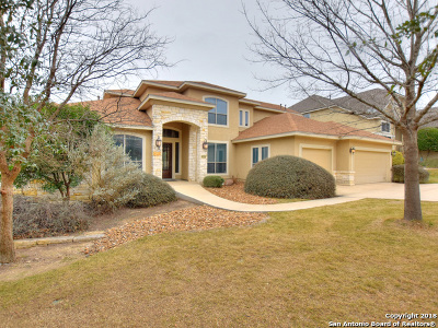 San Antonio Single Family Home For Sale: 3642 Ivory Creek