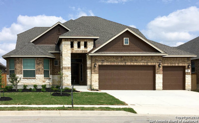 Cibolo Single Family Home New: 208 Kildare