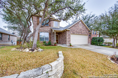 Helotes Single Family Home New: 9014 Cordes Jct