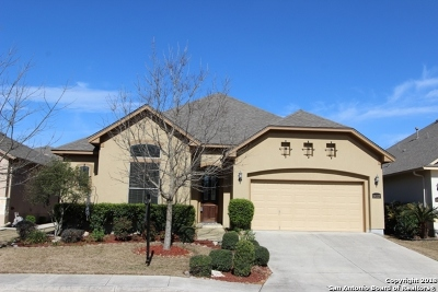 San Antonio Single Family Home New: 26327 Tuscan Mdw