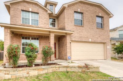San Antonio Single Family Home New: 24202 Mountain Bend